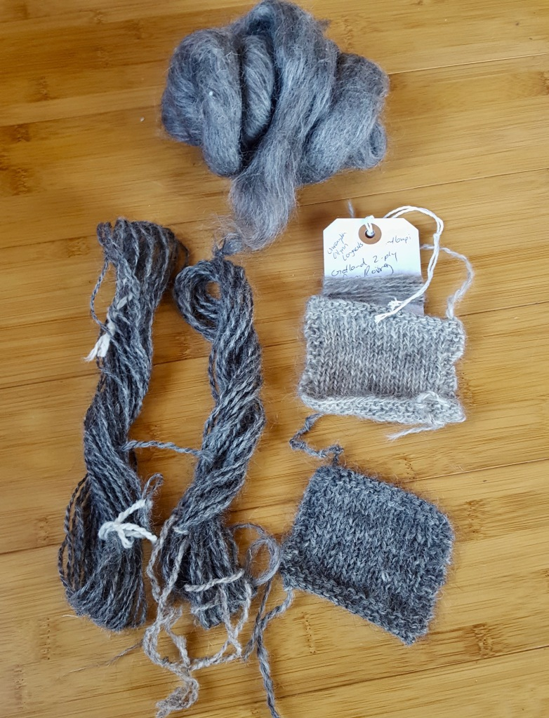 Gotland wool (clockwise from bottom left): skeins, roving, and swatches in natural grays.